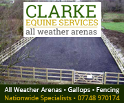 Clarke Equine Services 2019 (Lancashire Horse)