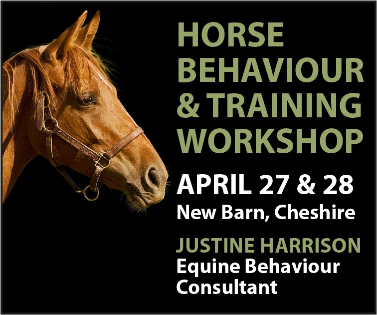 Justine Harrison Workshop April 2019 (Lancashire Horse)