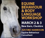 Justine Harrison Workshop March 2019 (Lancashire Horse)