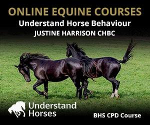 UH - Understand Horse Behaviour (Lancashire Horse)